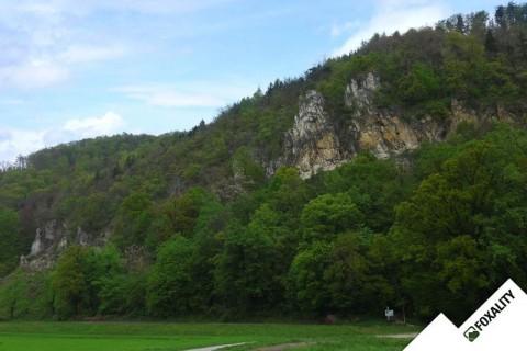 Sanierungsarbeiten im Klettergarten Weinzödl