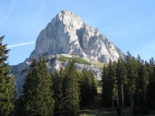 Gamspfeiler (5+) - hübsche Kletterei am Admonter Kalbling