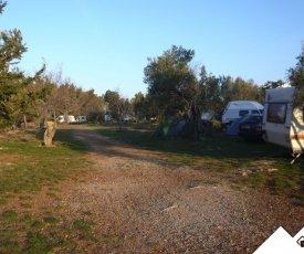 Auto Camp Starigrad-Paklenica